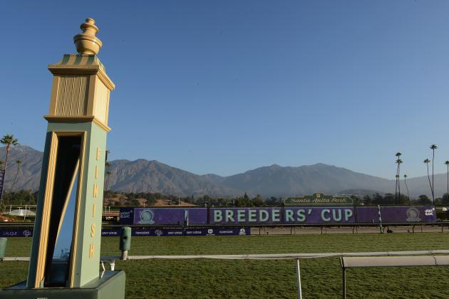 Breeders' Cup Entries: Complete List of Horses for Classic Race