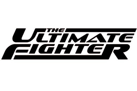 7 Ways to Reinvent the Ultimate Fighter