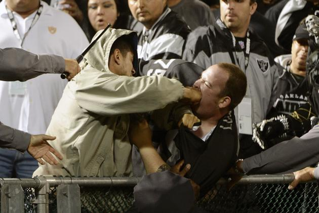 The 15 Best Fan Fights in Sports