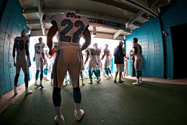 Miami Dolphins: What's Next? Late-Season and Future Assessment for Fins