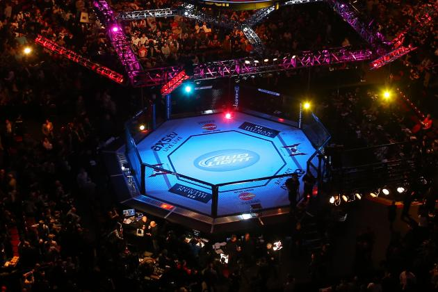 MMA: 14 'Fun' Fights Fans Would Love to See