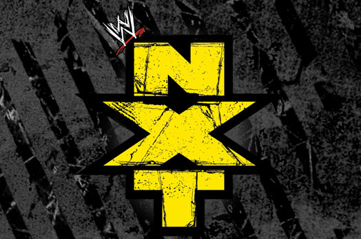 WWE Royal Rumble 2013: 5 NXT Superstars That Could Debut