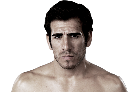 4 More Multi-Division MMA Fighters