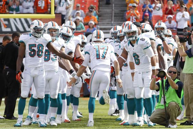5 Reasons to Be Optimistic About the Miami Dolphins in 2013