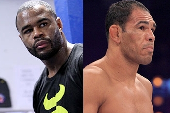 UFC 156: Rashad Evans vs. Antonio Rogerio Nogueira Head-to-Toe Breakdown