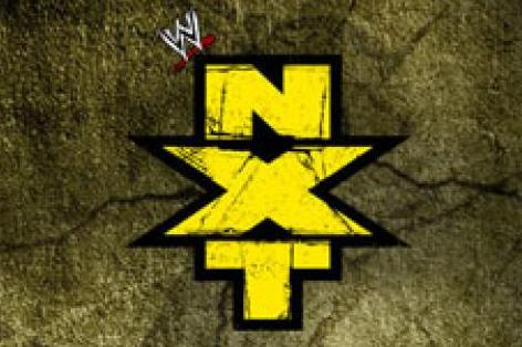 WWE NXT Scouting Report: Ranking the 10 Best Prospects in Developmental