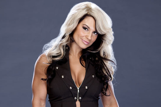 WWE Diva Debate No. 12