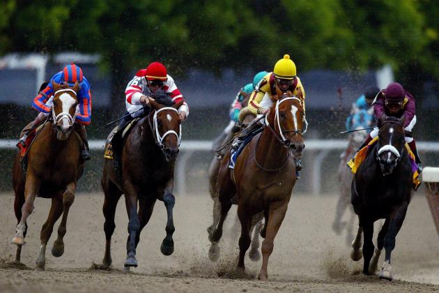 Weekend Rewind Feb. 23-24: A Look Back at the Weekend Stakes Highlights