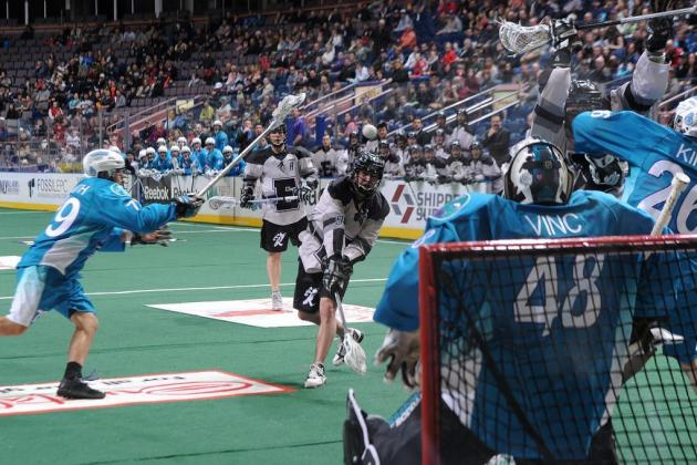 NLL 2013 Playoffs: Round 1 Previews and Predictions