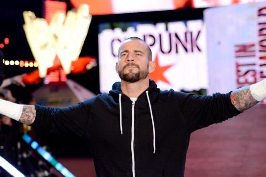 5 Superstars for CM Punk to Feud with After Payback