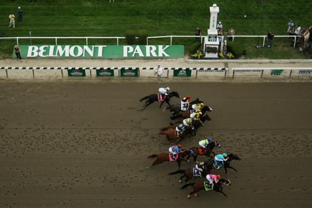 Belmont Stakes 2013: Latest Betting Lines and Predictions