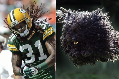 21 Sports Figures Who Look Like Animals
