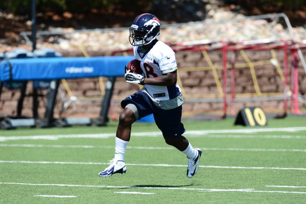Fantasy Football 2013: Highlighting the Biggest Takeaways from NFL Minicamps