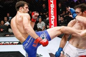 UFC 162: 5 Fights for Roger Gracie to Take Next