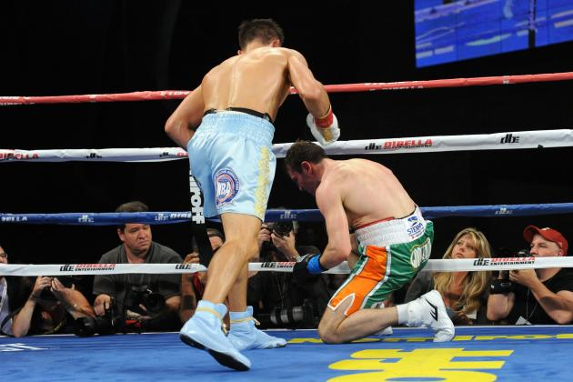 Ranking Boxing's 10 Best Knockouts in 2013