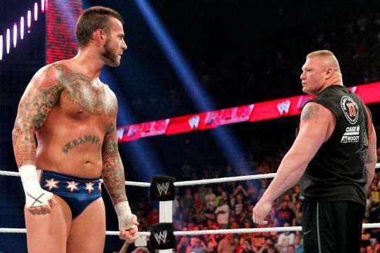 5 Reasons Why Brock Lesnar vs. CM Punk Will Be the Feud of the Summer