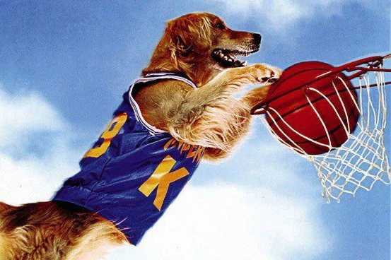 16 Kids Sports Movie Facts You Never Knew