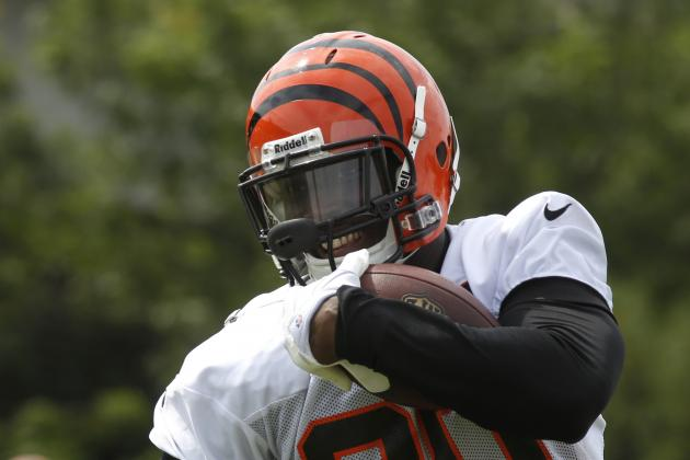 6 Unheralded Players Poised to Break Out for the Cincinnati Bengals in 2013-14