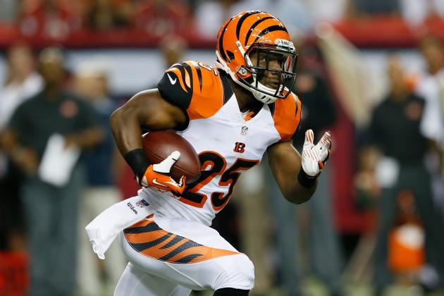What's New for the Cincinnati Bengals in 2013-14?