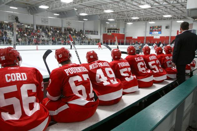 Detroit Red Wings Prospects Most Likely to Be Called Up in 2013-14