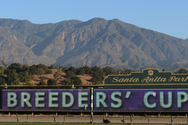 Breeders' Cup Odds: Betting Guide to Favorites and Dark Horses