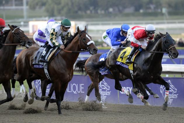 Breeders' Cup 2013: Power Ranking the Horses in This Year's Classic Field