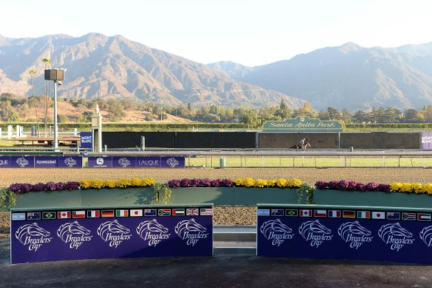 Breeders' Cup 2013 Contenders: Last-Minute Predictions for Saturday's Classic
