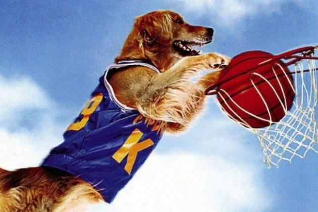 Sports Movies That Actually Need a Reboot