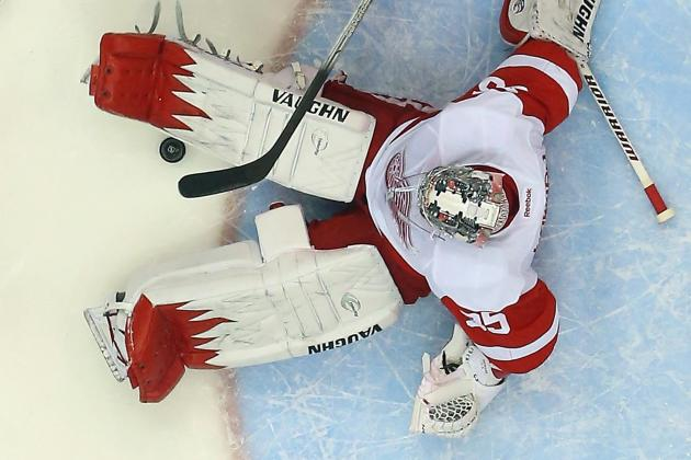 The Best Saves from Detroit Red Wings Goalies in 2013-14