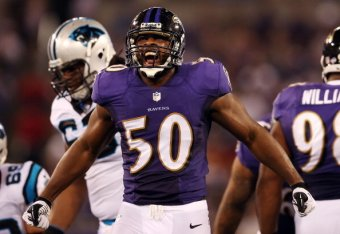 Baltimore Ravens Albert McClellan ELITE Jerseys