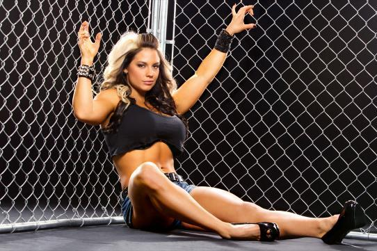5 Most Memorable Moments of Kaitlyn's WWE Career