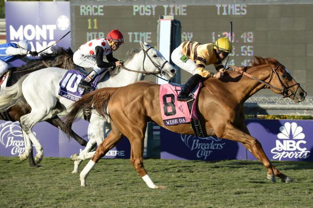 Wise Dan Big Winner at Eclipse Awards