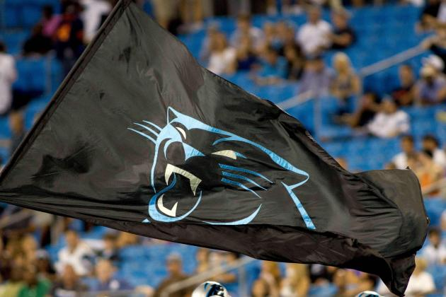Carolina Panthers' State of Franchise at the Start of the 2014 Offseason