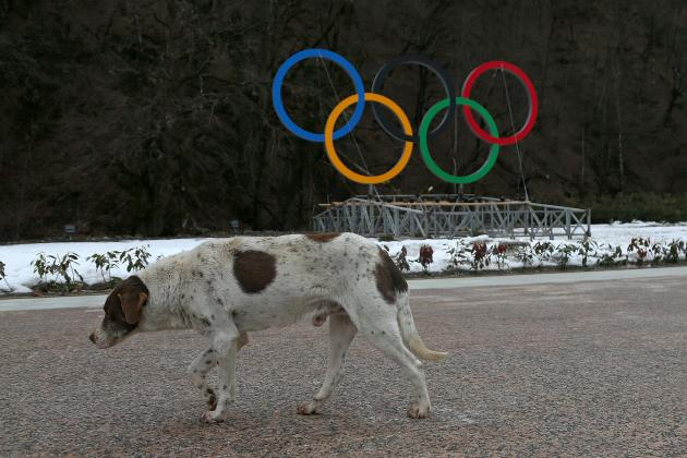 The 20 Biggest #SochiProblems