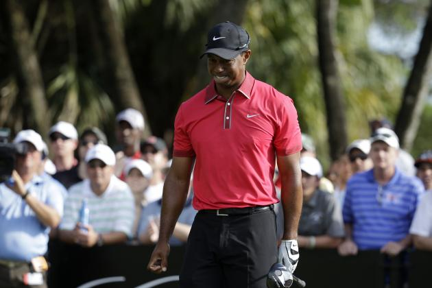 Golfers with the Best Chance to Unseat Tiger Woods Atop the OWGR