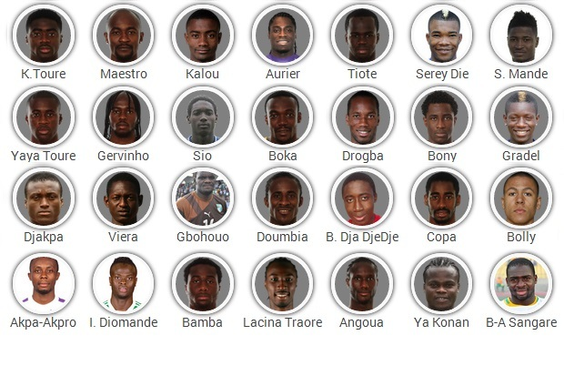 Cote D'Ivoire 2014 FIFA World Cup Squad: Player-by-Player Guide