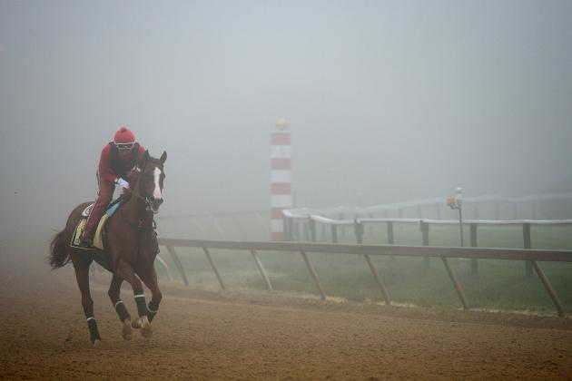 Preakness 2014: Betting Guide to Favorites and Dark Horses
