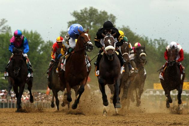 2014 Preakness Horses: Ranking Every Contender at Pimlico