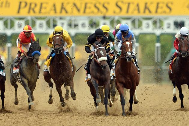 Preakness Odds 2014: Last-Minute Updates and Picks