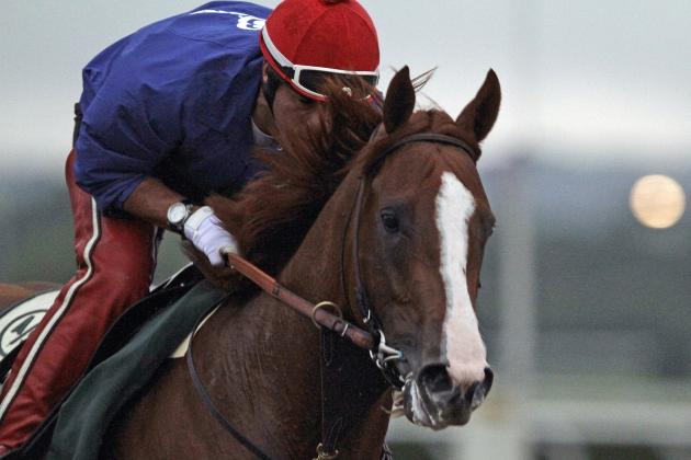 Belmont Stakes 2014: Betting Guide to Favorites and Dark Horses