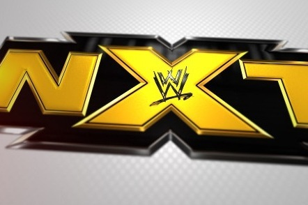 Projecting NXT and Developmental Stars' Chances of Succeeding in WWE
