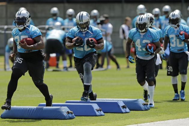 nfl ELITE Carolina Panthers Lou Young Jerseys