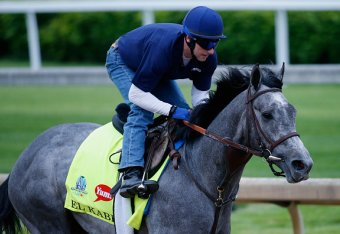 Kentucky Derby 2015 Post Positions: Horse Odds, Prize Money