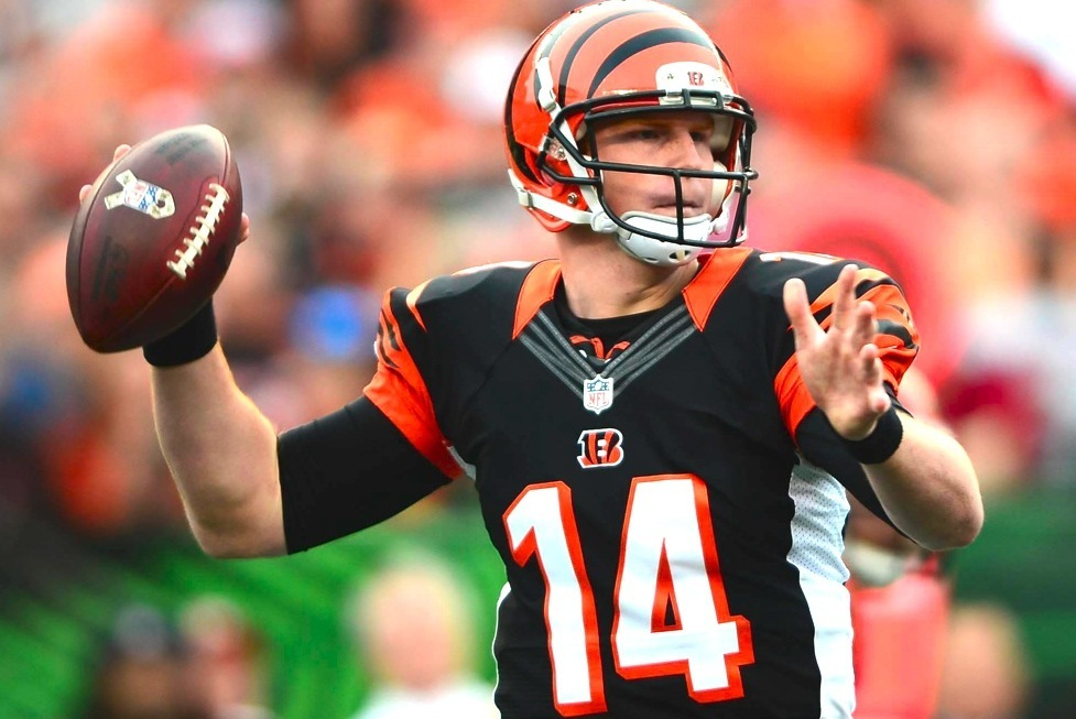 Get the latest Cincinnati Bengals news scores stats standings rumors and more from ESPN