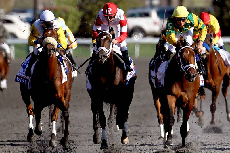 Coolmore Lexington Stakes 2013 Results: Winner, Order of Finish and