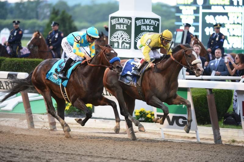 Belmont Stakes Expert Picks: Breaking Down Where Smart Money Lies