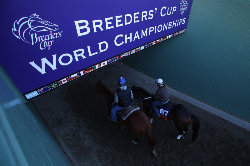 Breeders' Cup 2013 Predictions: Contenders Who Will Falter on Saturday Night