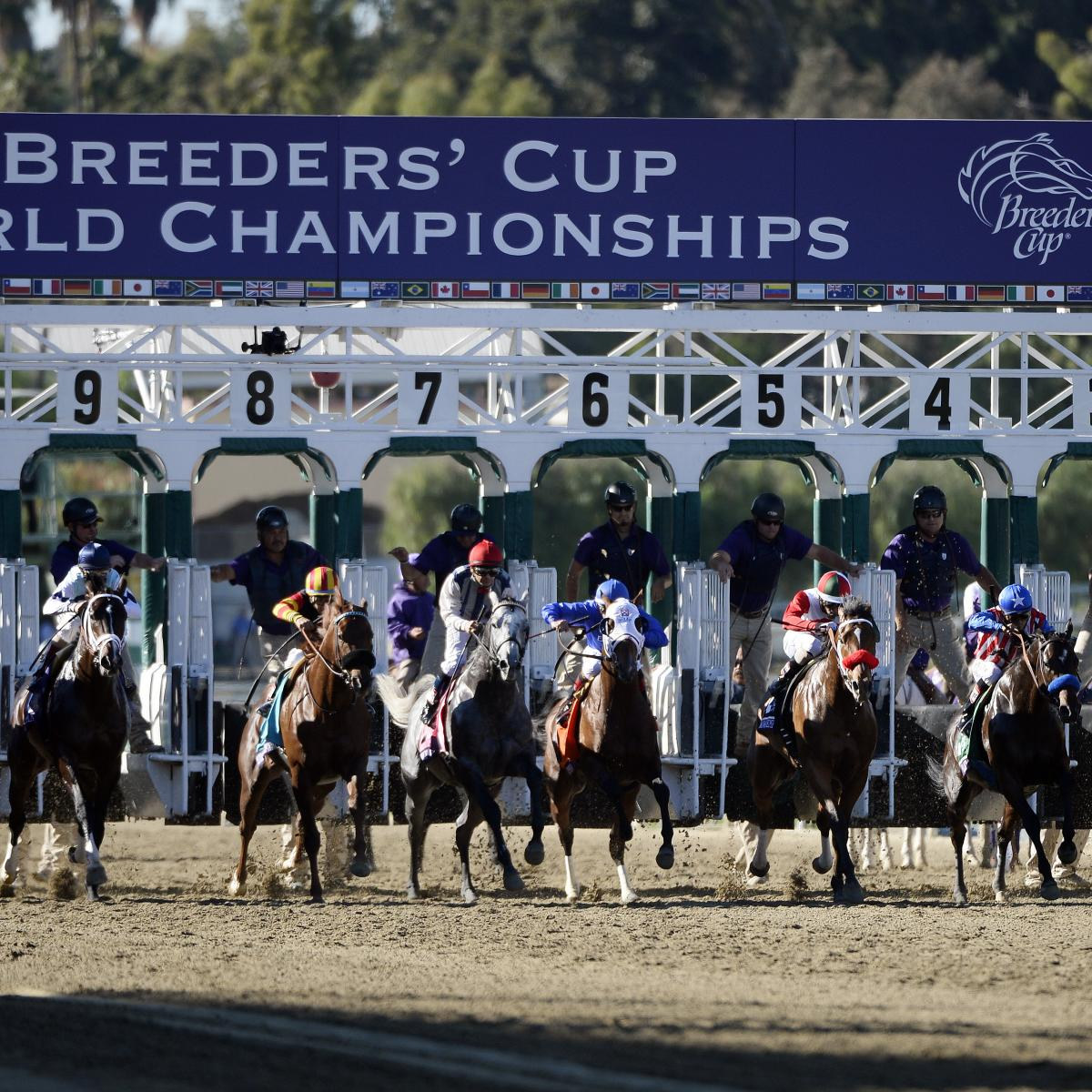 Breeders Cup 2013 Results Day 2 Live Analysis And