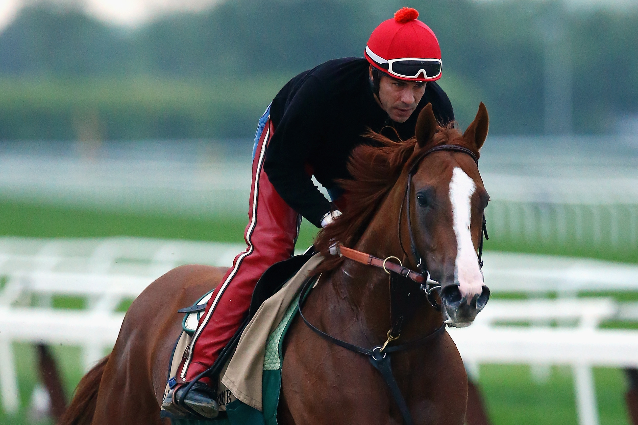 California chrome triple crown odds betting crypto sports betting sites
