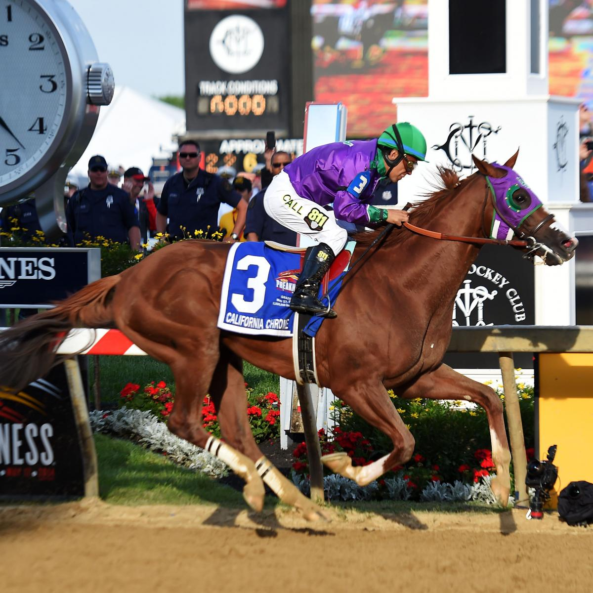 Belmont Stakes Draw 2014 Post Positions Field And Race